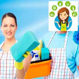 клининговые услуги - экспресс уборка
