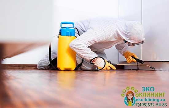 Уборка после уничтожения тараканов
